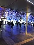 イルミネーション博多駅.jpg
